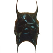 Thornback ray eggcase