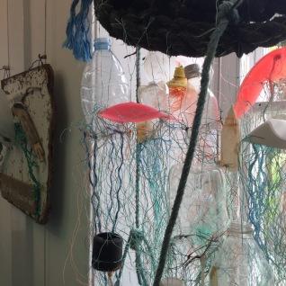 Schools jellyfish